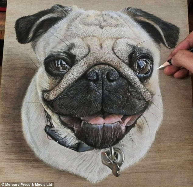 Drawn puppy real dog Out are photographs Hoo pug