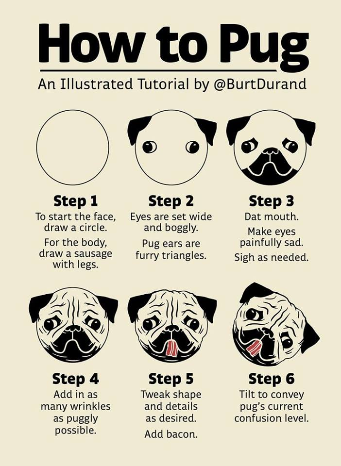 Drawn pug happy How Pinterest More How Pugly