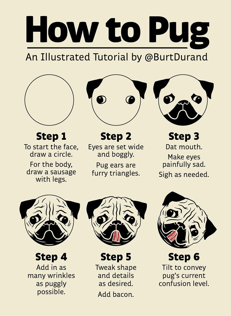 Drawn pug illustrated Pug tutorial 25+ an you