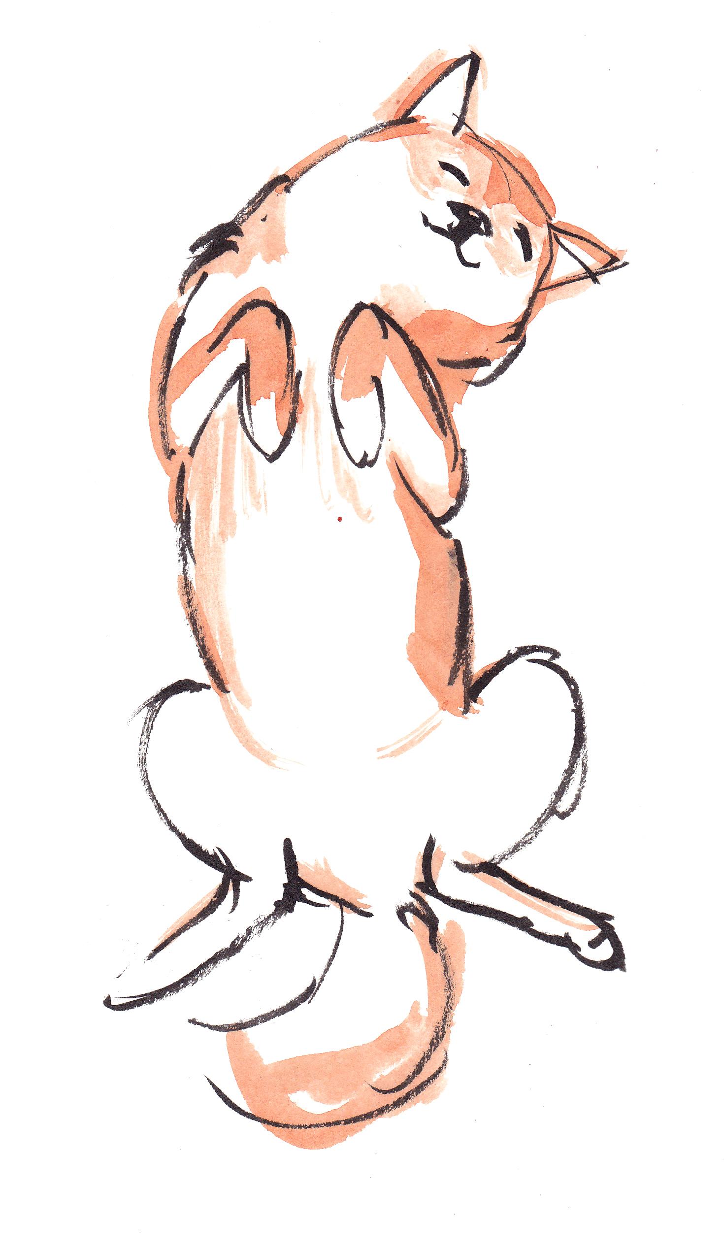 Drawn pug illustration tumblr Dog Tumblr art Cute