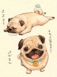Drawn pug illustration tumblr Tumblr desenhos pug Illustration drawings