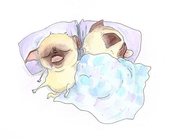 Drawn pug ink Images Bedroom Drawing Pinterest on