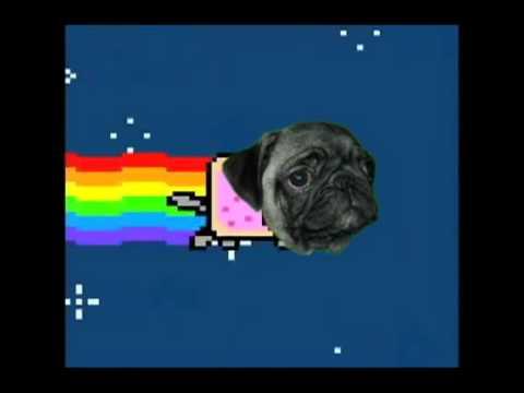 Drawn pug nyan Nyan YouTube Pug Nyan Pug
