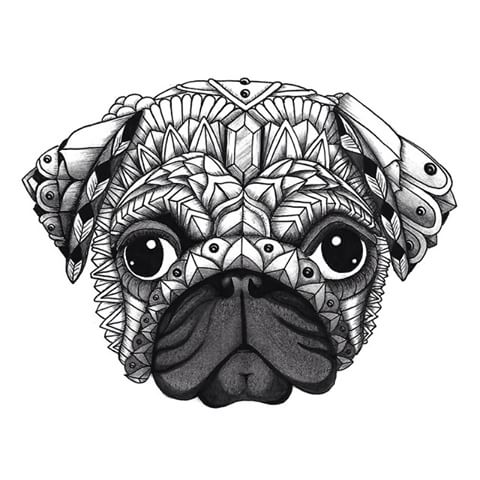 Drawn pug pen DOMINGUEZ Pug Ornate  ADRIAN