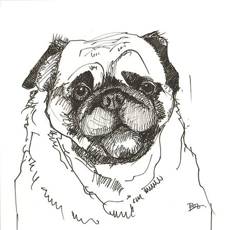 Drawn pug pen Fluid Paper Press Pitt Artist's