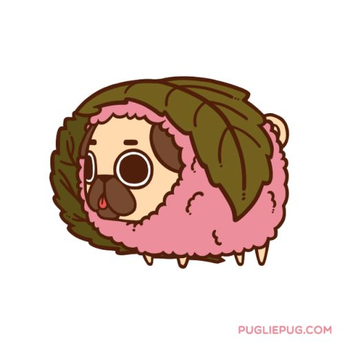 Drawn pug pink You who the images stream!)