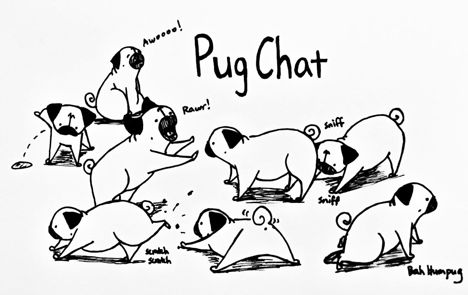 Drawn pug poo Use February hosts on hour