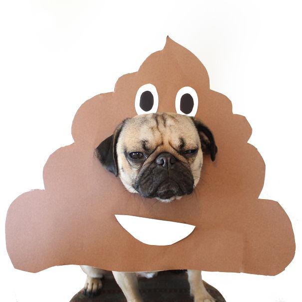 Drawn pug poo Bored Pug Better Poop Than