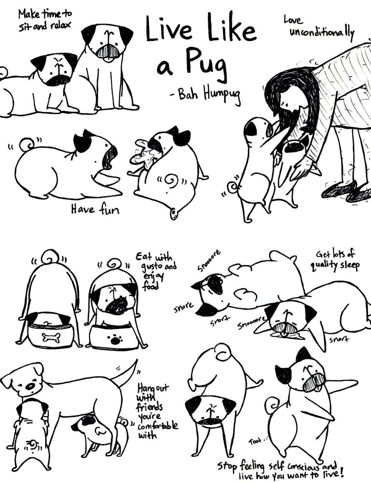 Drawn pug poo Bah Like Live a a