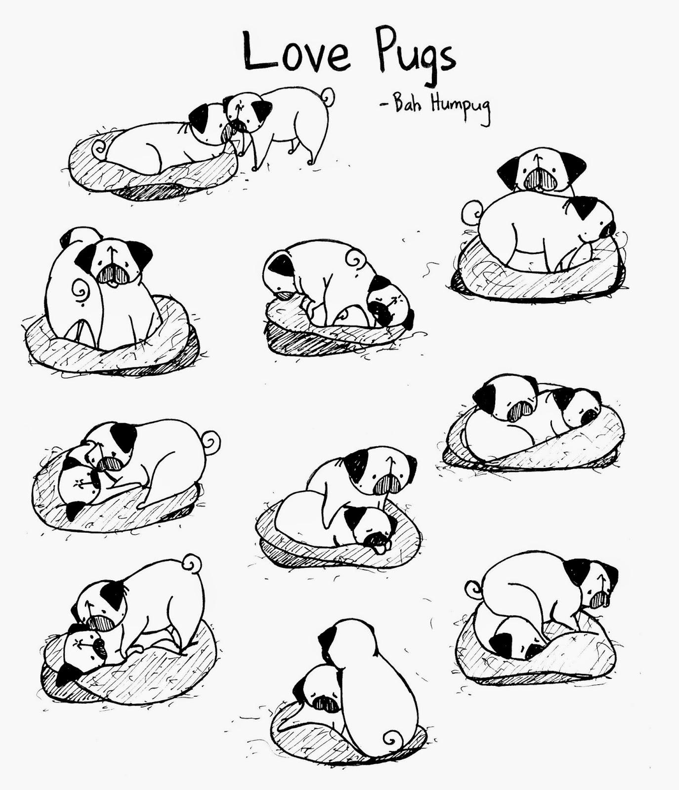 Drawn pug poo Was Humpug: and that would