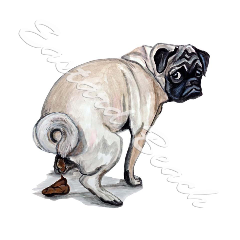 Drawn pug poo : [STK305L] Decal Beach
