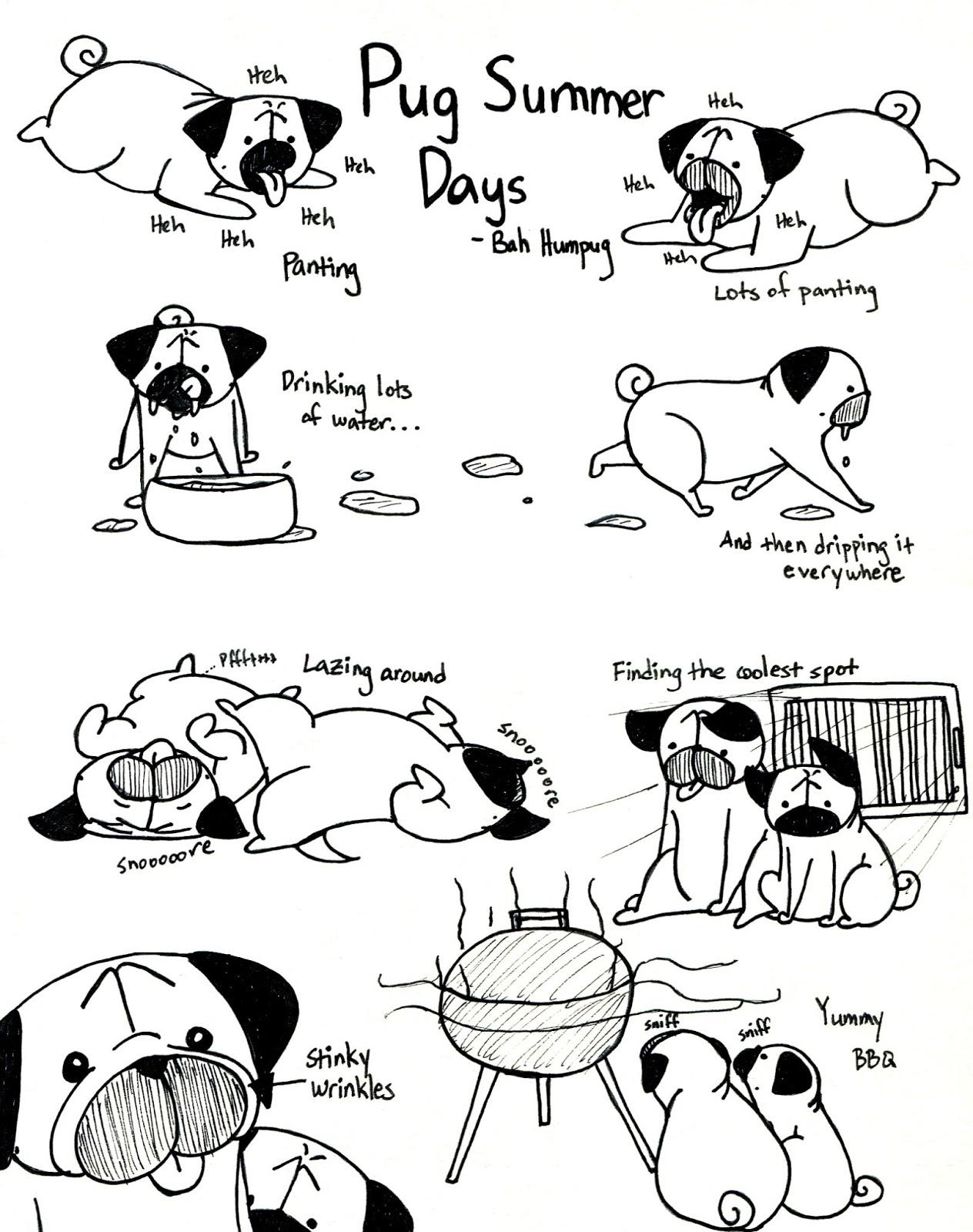 Drawn pug poo Humpug: Pug Days 2013 Summer