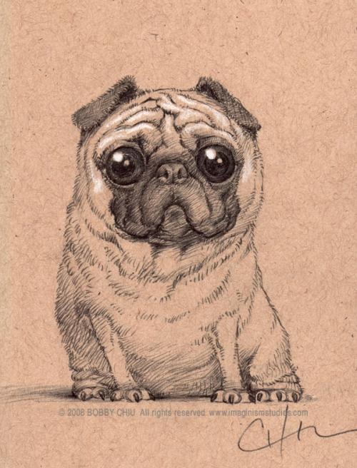 Drawn pug pug dog Pug cute by on Heart