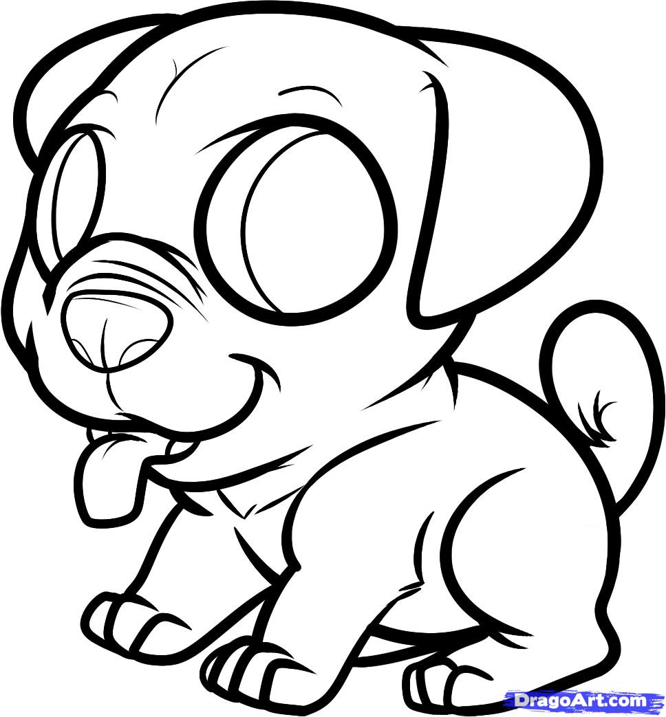 Drawn puppy dragoart Pets to a pug Step