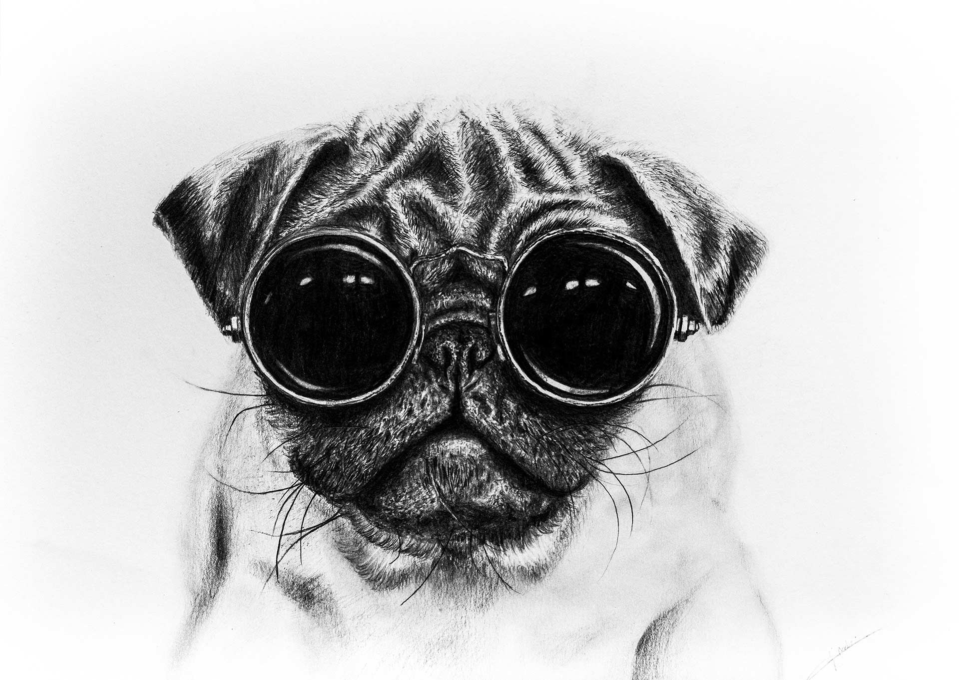 Drawn pug realistic YouTube Drawing Drawing with Pug