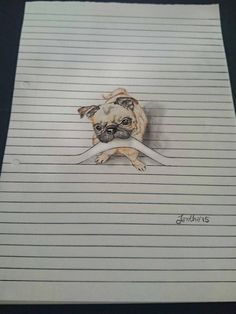 Drawn pug rip Beautiful of pencil pugs isn't