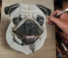 Drawn pug simple realism On by Pug boards