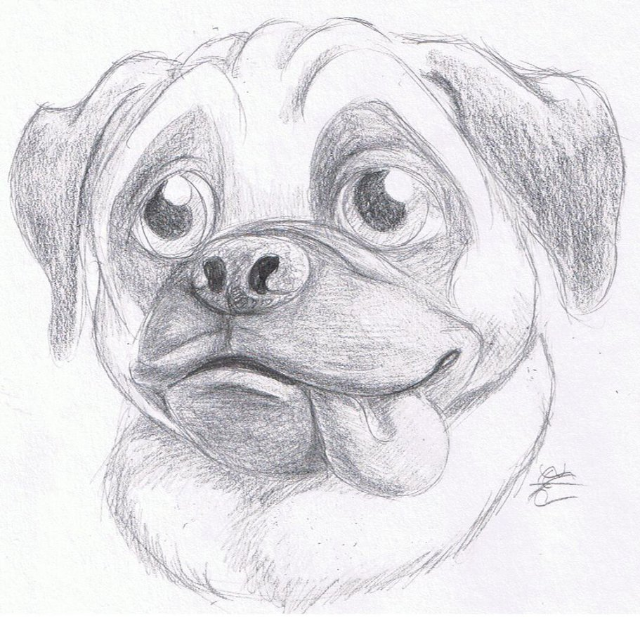 Drawn pug sketch Pug Day Pug Day by
