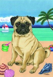 Drawn pug supe Pinterest pig a Beach Cute
