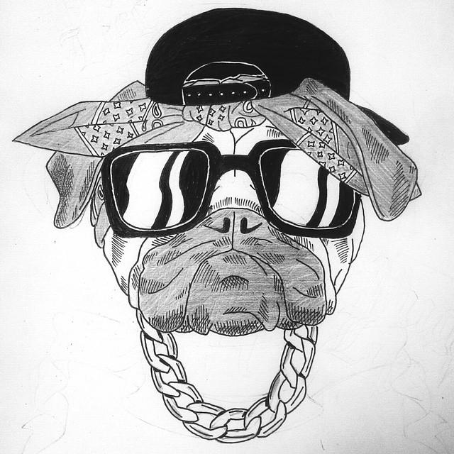 Drawn pug thug #dog pug on #handdrawing dog