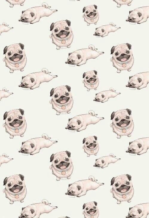 Drawn pug tumblr backgrounds Tumblr wallpaper Search tumblr dog