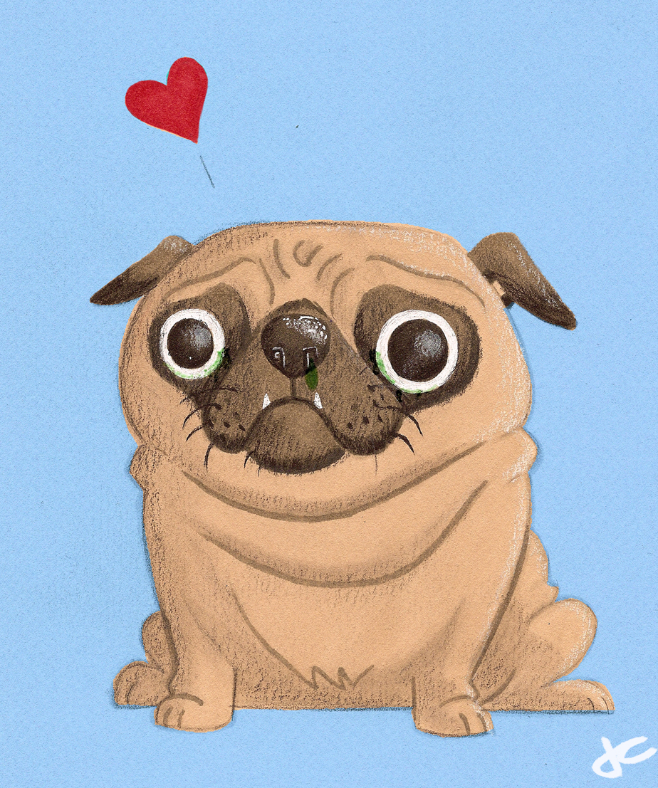 Drawn pug valentines day Did little little i day
