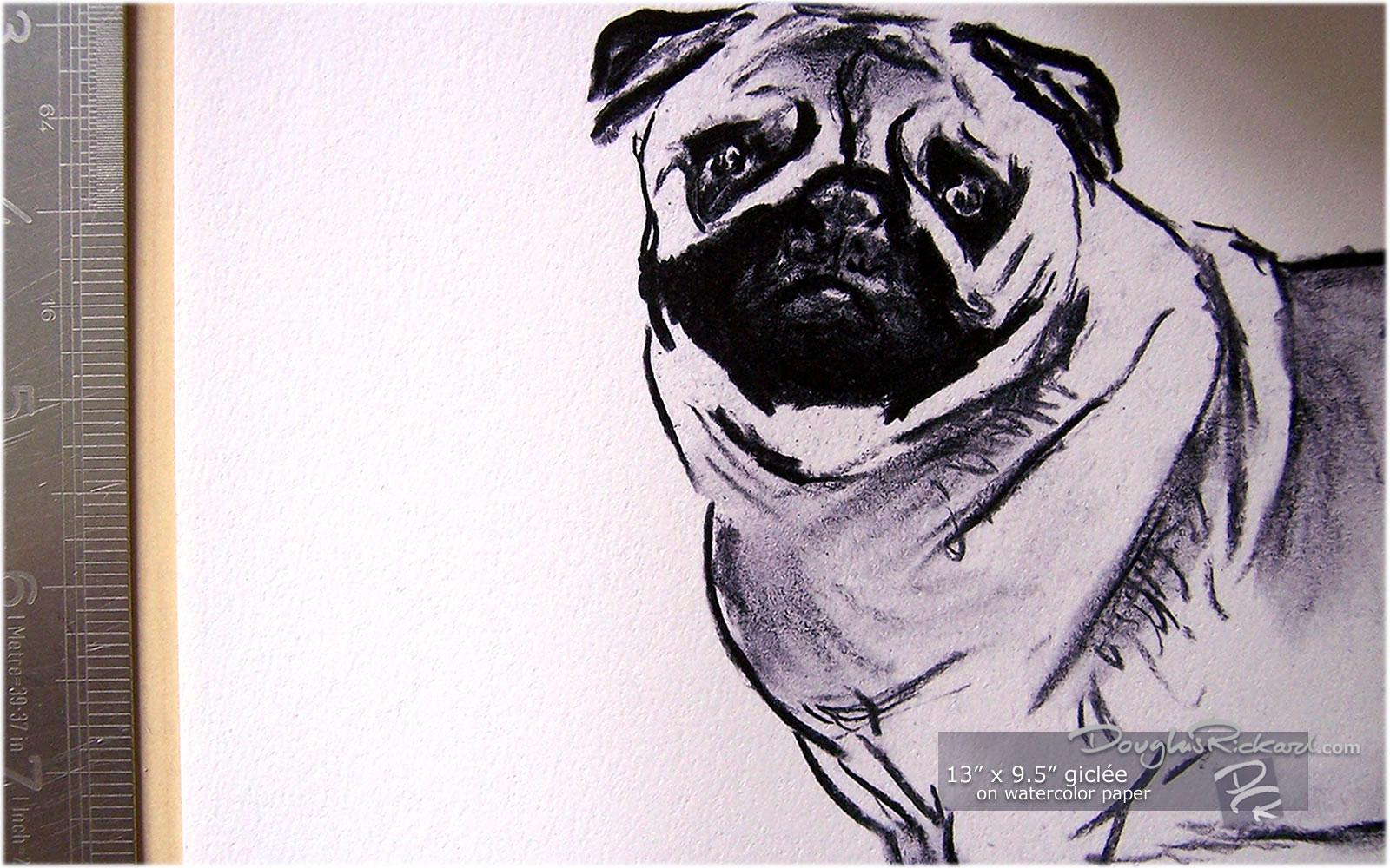 Drawn pug watercolor 5
