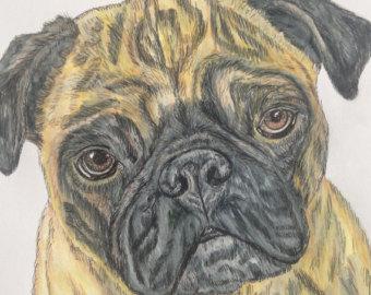 Drawn pug watercolor Original Pug and painting pug