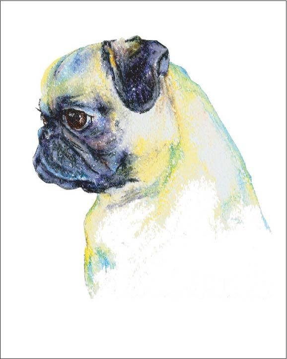 Drawn pug watercolor Art I Pug of Pinterest