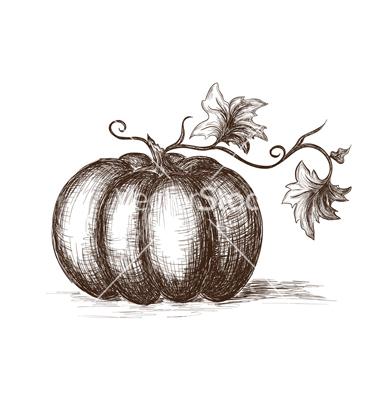 Drawn pumpkin Tattoos drawn on Hand Hands