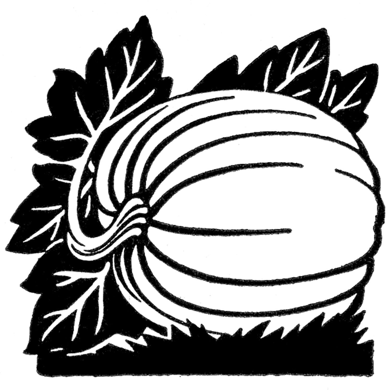 Drawn pumpkin black and white Clip Black Download Free Pumpkin
