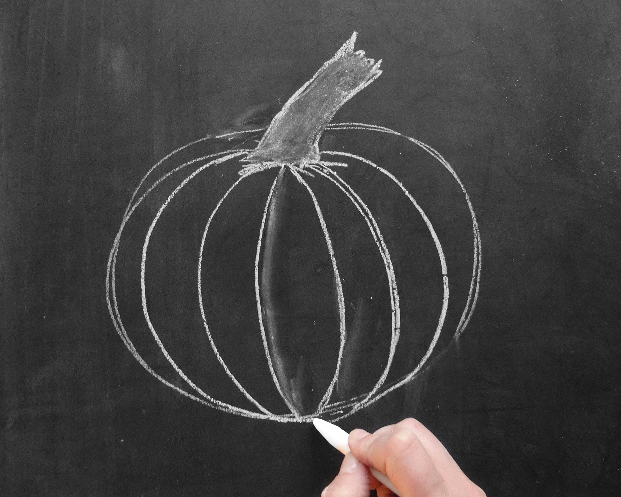 Drawn pumpkin chalk Breaks how Draw Lily for
