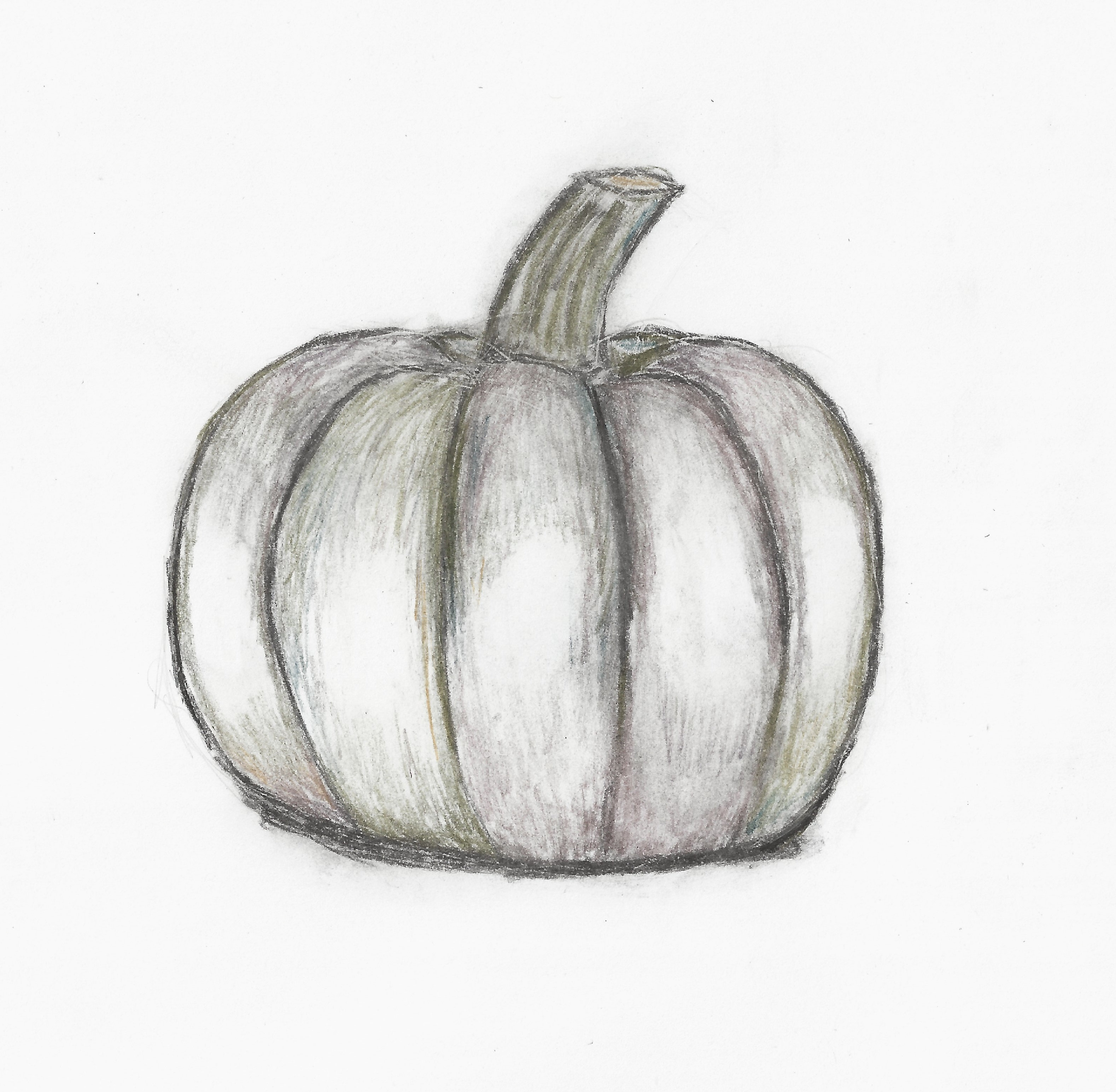 Drawn pumpkin charcoal Pumpkin – 2014 on Wry