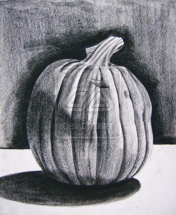 Drawn pumpkin charcoal Pumpkin  Pumpkin Drawings Charcoal