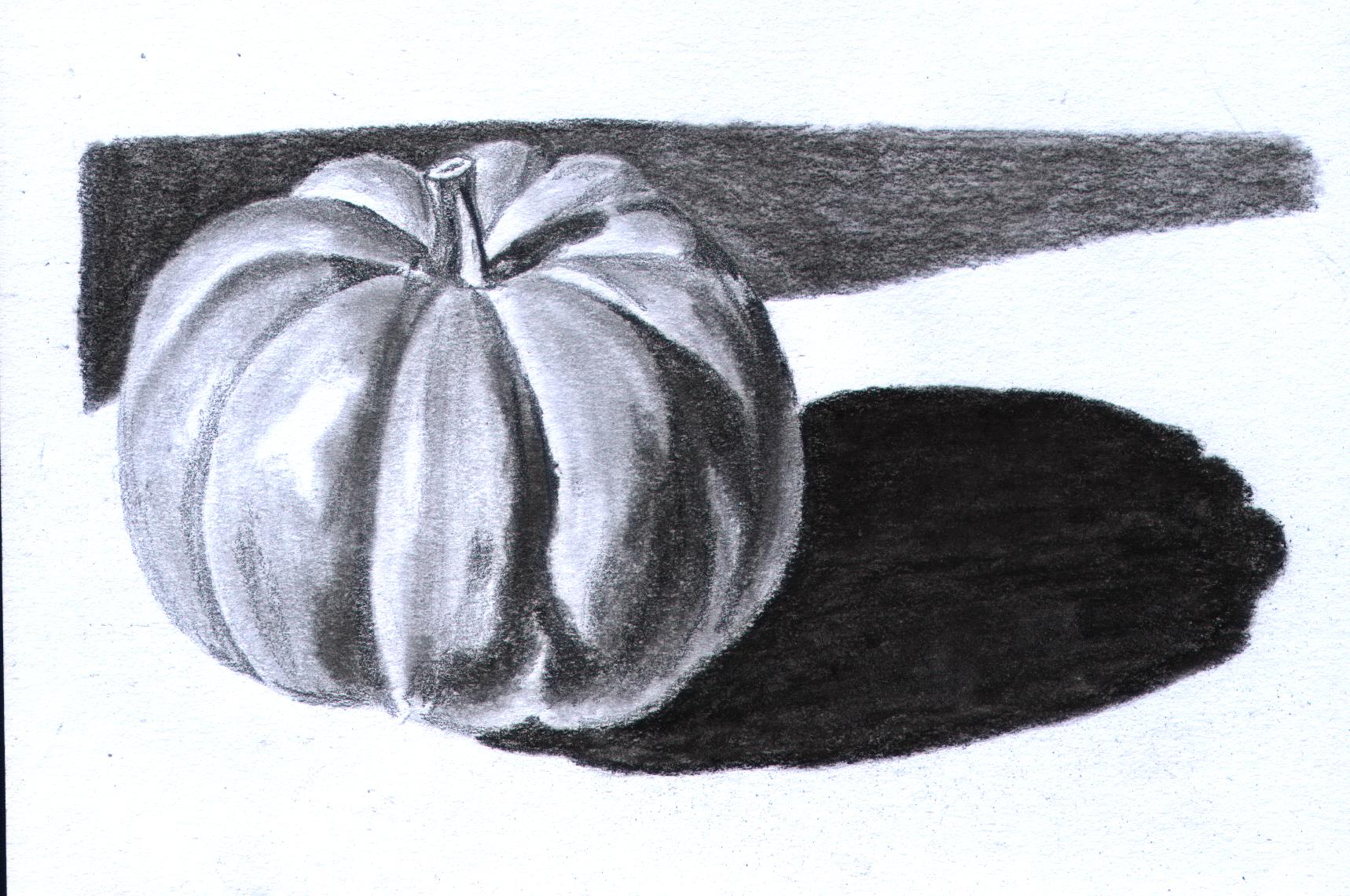 Drawn pumpkin charcoal Pumpkin Pencil Art and of
