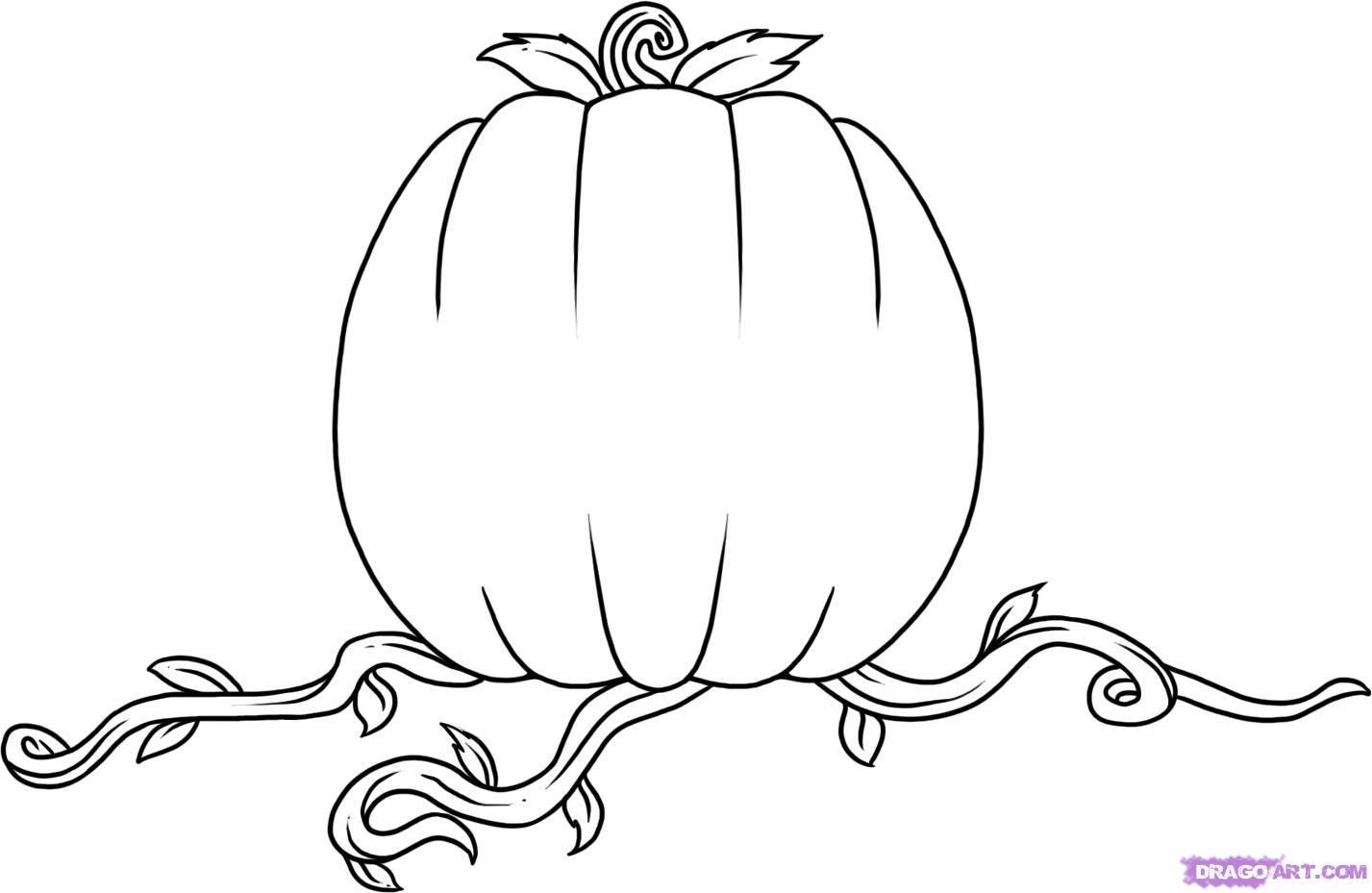 Drawn pumpkin cinderella pumpkin Pumpkin step Step to draw
