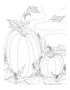 Drawn pumpkin color Page Page coloring pumpkins pumpkin