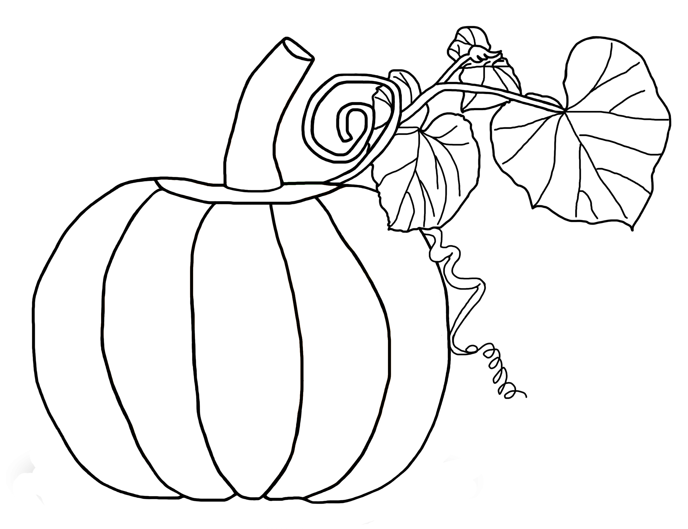 Drawn pumpkin color for kid Pages Coloring Printable Free Page