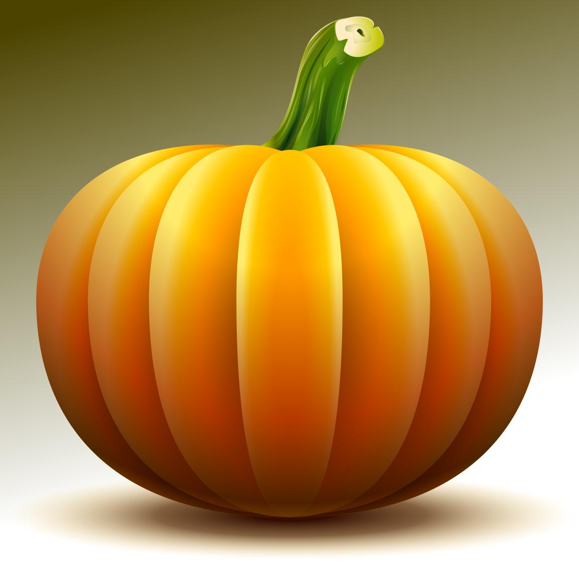 Drawn pumpkin gourd DigitalDrawer: Draw a Pumpkin