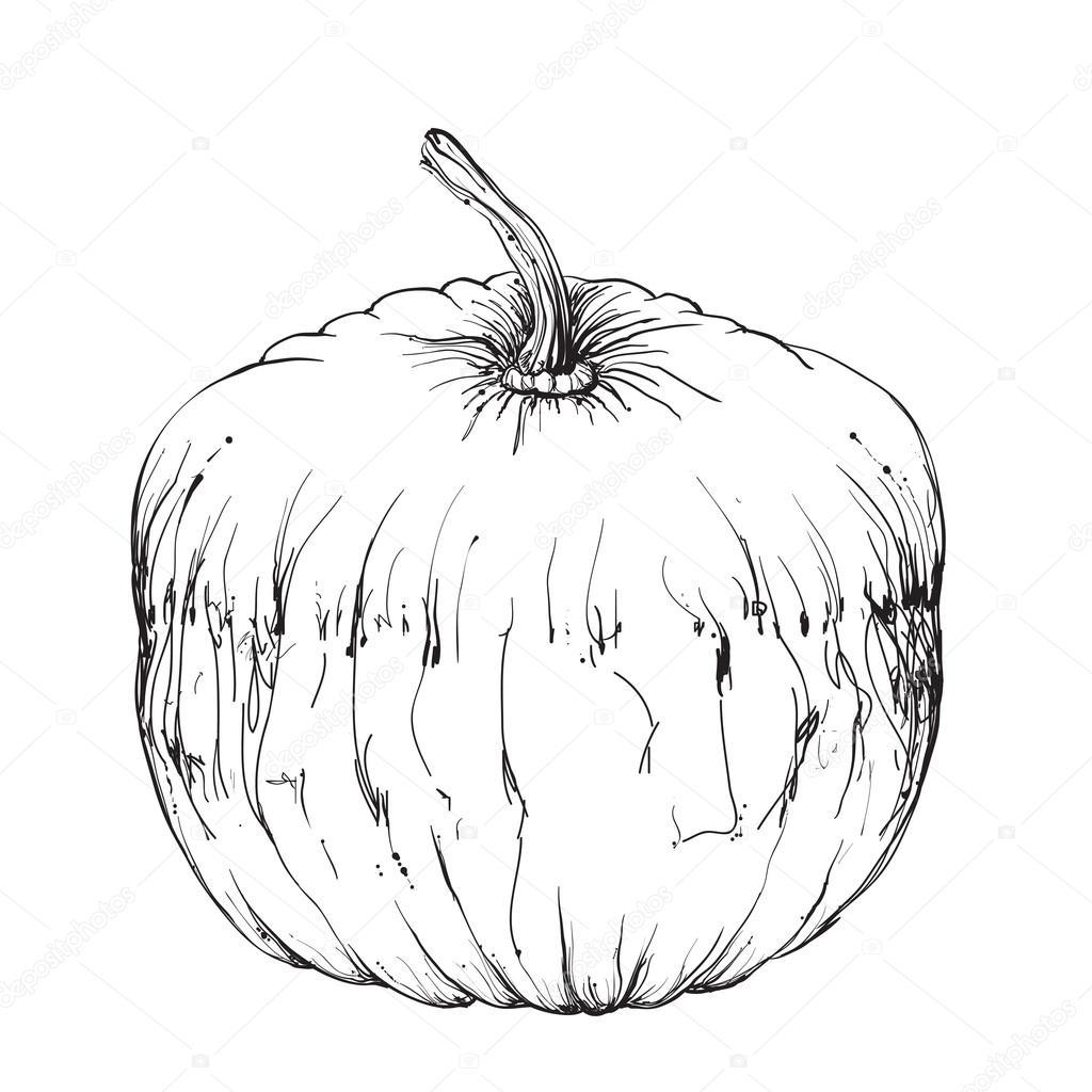 Drawn pumpkin hand drawn #127697812 Stock Yuliia25 Hand pumpkin