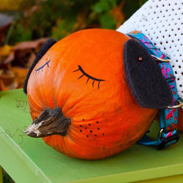 Drawn pumpkin marker Pumpkin Puppy Draw the Pumpkin