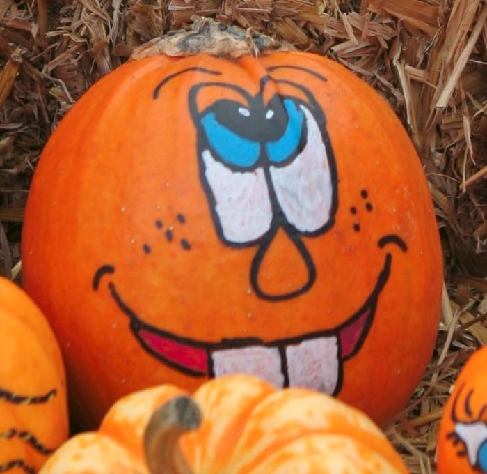 Drawn pumpkin marker Faces Pumpkins: Fall Painted Pumpkin
