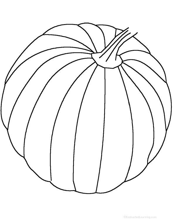 Drawn pumpkin nursery class Perimeter and EnchantedLearning Fruits Vegetables: