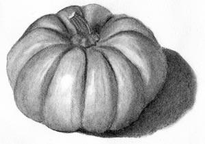 Drawn pumpkin pencil Drawing Joy  of Charcoal