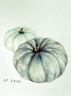 Drawn pumpkin pencil Pencil Original this Halloween White