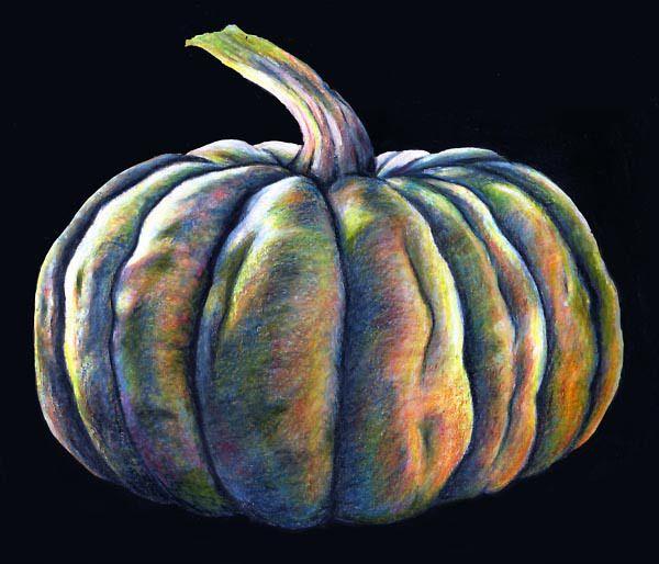 Drawn pumpkin pencil 25+ pumpkin queensland Best drawing