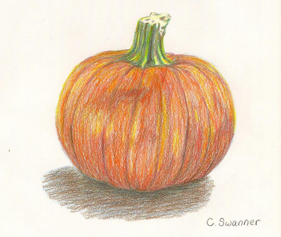 Drawn pumpkin pumkin Drawings  Drawing Pencil of