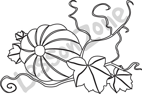 Drawn pumpkin pumpkin flower Pumpkin pumpkin%20vine%20drawing Free Vine Clipart