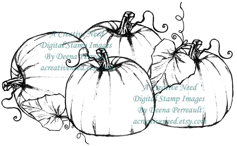 Drawn pumpkin pumpkin patch Download PATCH PUMPKIN Digital Image