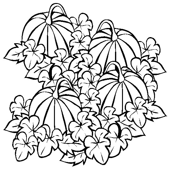 Drawn pumpkin pumpkin patch Patch Pinterest digital and other